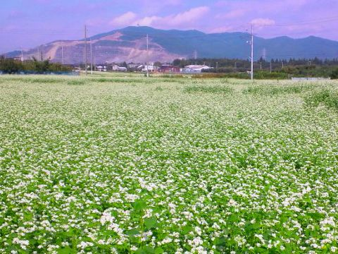 tsukuba120930